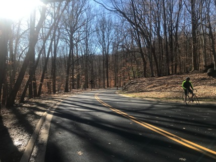 Smooth pavement in Rock Creek Park